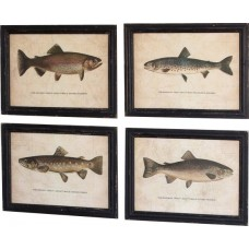 Loon Peak Trout Prints Under 4 Piece Framed Graphic Art Print Set on Glass LOPK1131