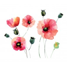 WallPops! Home Decor Line Watercolor Poppies Wall Decal WPP1366