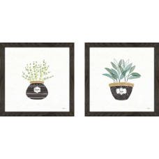 Gracie Oaks 'Fine Herbs VI' 2 Piece Framed Watercolor Painting Print Set GRCS2807
