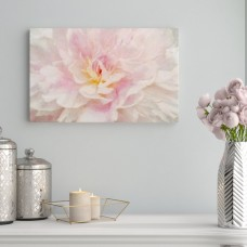 Willa Arlo Interiors 'Pink Peony' Print on Wrapped Canvas WLAO4827