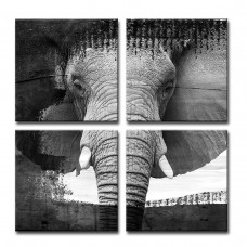 Bloomsbury Market 'Elephant VII' 4 Piece Graphic Art on Canvas Set BLMS7014