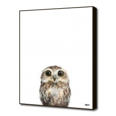 Curioos 'Little Owl' by Amy Hamilton Painting Print CRIO1721