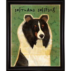 East Urban Home 'Shetland Sheepdog Tri-Color' Graphic Art Print EUHG2686