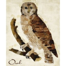 Loon Peak 'Brown Owl' Graphic Art Print LNPE2515