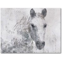 Union Rustic 'Dapple Horse I' Graphic Art Print on Wrapped Canvas UNRS7282
